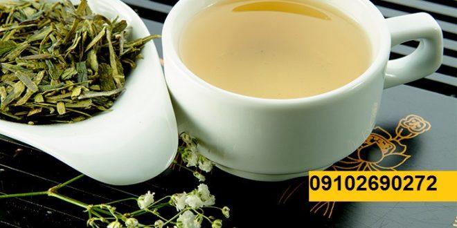 چای سبز ارزان قیمت از کجا تهیه کنیم؟