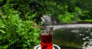 فروش چای دبش کلاسیک معطر