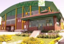 Photo of فروش عمده چای احمد از درب کارخانه
