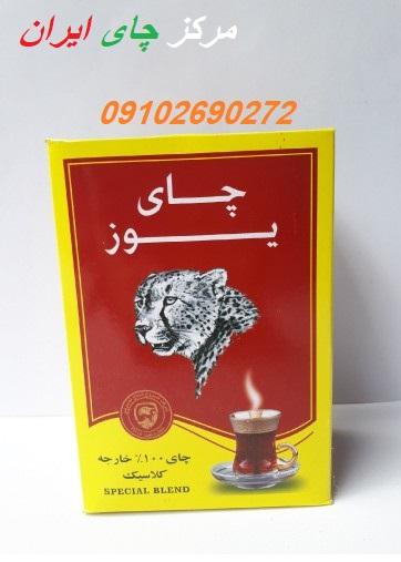فروش عمده چای یوز در مرکز چای ایران