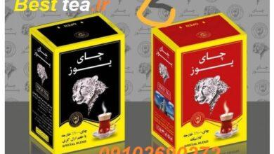 Photo of خرید عمده چای یوز / فروش عمده چای یوز با تخفیف