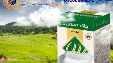 Photo of خرید اینترنتی چای محمود از کارخانه