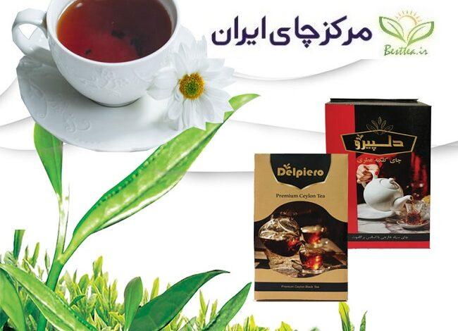 Photo of خرید چای دلپیرو از کارخانه