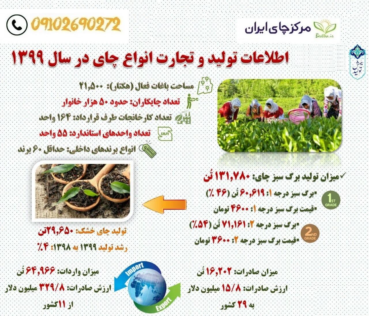 صادرات چای به عراق